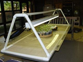 A QUICK & EASY GROW LIGHT FRAME BUILT OF PVC PIPE & FITTINGS